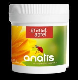Anatis Bild Dose 1 Granatapfel 400px