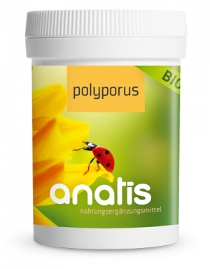 Anatis Bild Dose 2 Polyporus 400px